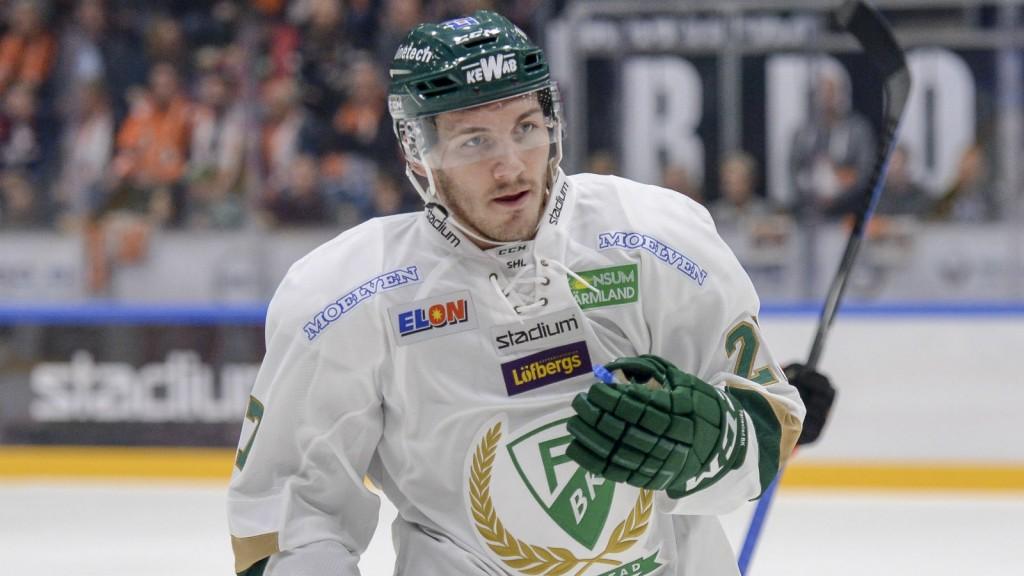 John Persson - photo courtesy: www.hockeysverige.se