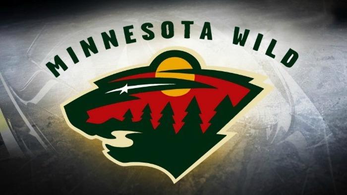 Minnesota Wild logo courtesy of 365twincities.com